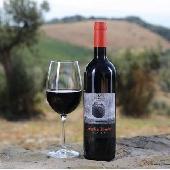 Sequerciani Foglia Tonda IGT Toscana 2017 - N. 12 Bottles