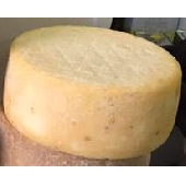 Pecorino Sardo con cuajo vegetal - Dolce di cardo curado 3 meses - Azienda Agricola Mureddu Aru