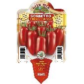Tomate San Marzano - Orto mio