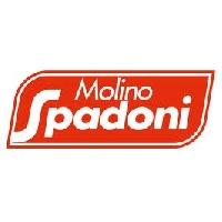 Logo Molino Spadoni