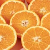 jugosas naranjas de Sicilia Ribera