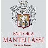 Morellino di Scansano Docg - Fattoria Mantellassi