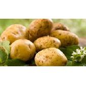 Patatas italianas