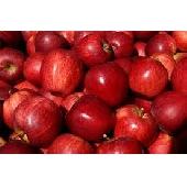 Manzana Red Delicious
