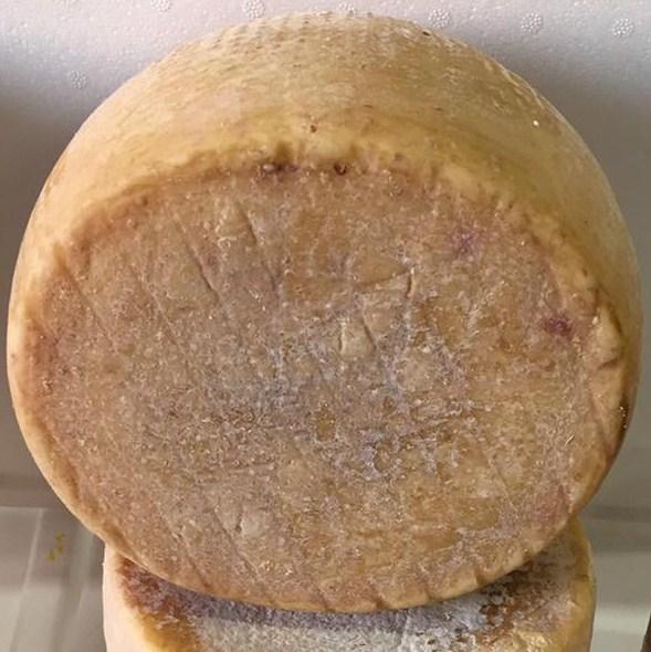 Pecorino Sardo con cuajo vegetal - Dolce di cardo - curado 12 meses  - Azienda Agricola Mureddu Aru