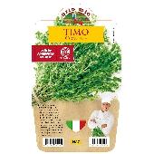 Tomillo- Plantita en maceta de 14 cm - Orto mio