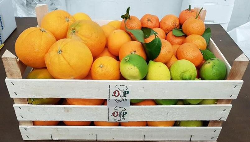 Cassata degustaci�n de c�tricos sicilianos de 6 kg. de naranjas de jugo 6 kg. naranjas Fioroni Washington 3 kg. mandarinas 2kg. limones