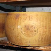 Forma entera de Parmigiano Reggiano